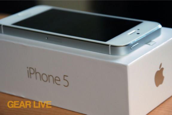 iPhone 5 White & Silver antenna frame